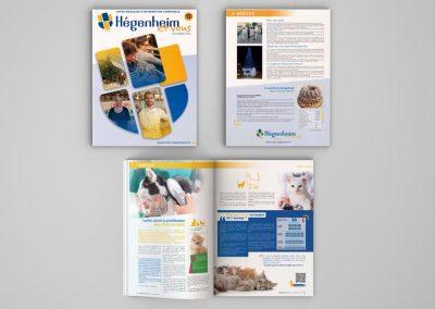 Magazine de Hégenheim 2020